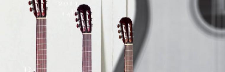 Audition de Guitare